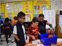 Winthrop Avenue Tackle Halloween STEM Activities photo  thumbnail138884